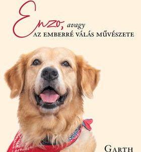 Enzo, avagy az emberré válás művészete