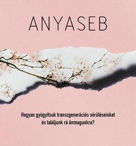 Anyaseb